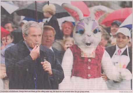 Bush and Bunny